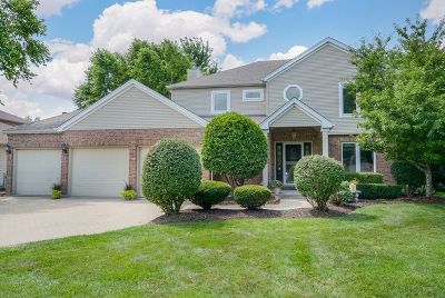 Plainfield Single Family Home Contingent: 13632 Sharp Drive