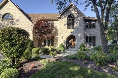 Naperville Single Family Home For Sale: 2041 Mustang Drive