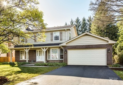 Lake Forest Single Family Home For Sale: 85 Niles Avenue