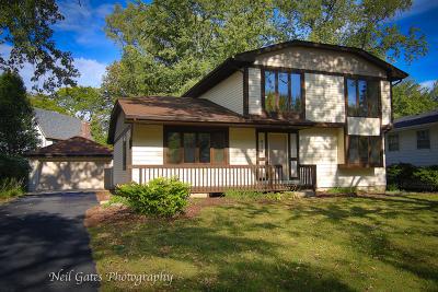 Naperville Single Family Home For Sale: 924 Rose Lane