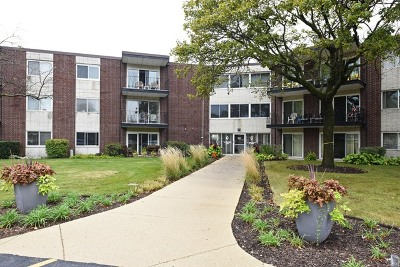 Downers Grove Condo/Townhouse For Sale: 2800 Maple Avenue #22A