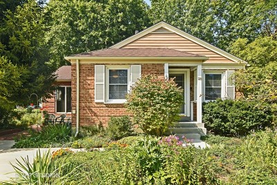 Palatine Single Family Home For Sale: 42 North Rohlwing Road