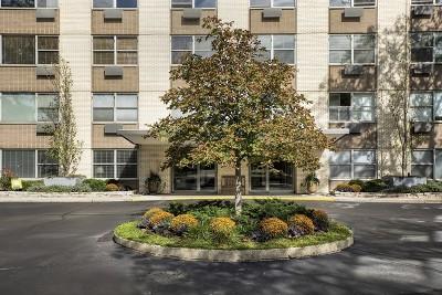 Wilmette Condo/Townhouse New: 1440 Sheridan Road #704