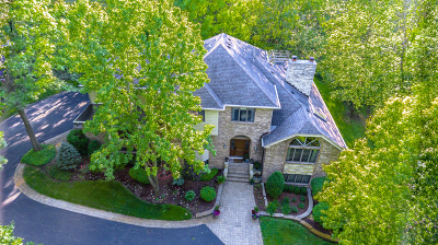 Palos Park Single Family Home Contingent: 11720 South Holmes Avenue
