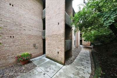 Lisle Condo/Townhouse New: 5902 Forest View Road #1D