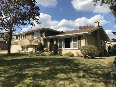 Schaumburg Single Family Home For Sale: 720 Preston Lane