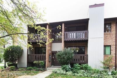 Willowbrook Condo/Townhouse Contingent: 324 Sheridan Drive #2B