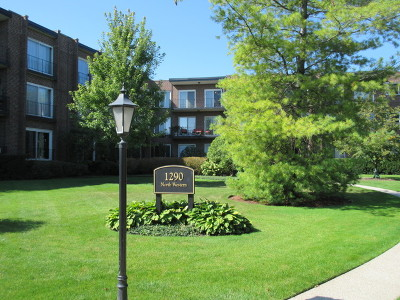 Lake Forest Condo/Townhouse New: 1290 North Western Avenue #110