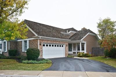 Barrington Single Family Home New: 531 Park Barrington Way