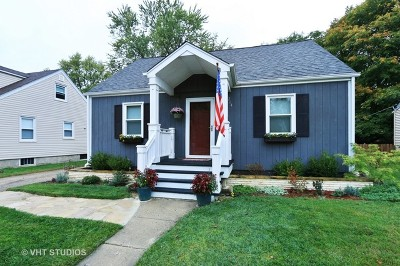 Mundelein Single Family Home For Sale: 264 North Garfield Avenue
