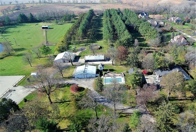 Du Page County Single Family Home For Sale: 5n170 Powis Road