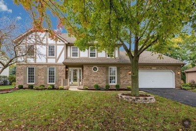 Naperville Single Family Home For Sale: 359 Knoch Knolls Road