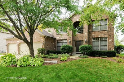Naperville Single Family Home For Sale: 2807 Champion Road