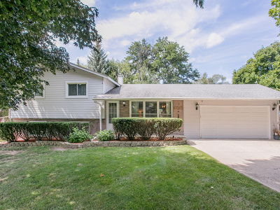 Glen Ellyn Single Family Home New: 2n174 Diane Avenue