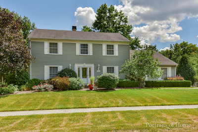Downers Grove Single Family Home New: 1081 Barneswood Drive
