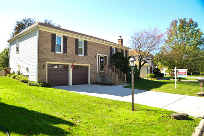 Roselle Single Family Home For Sale: 1305 Chatham Lane