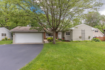 Glen Ellyn Single Family Home For Sale: 91 North Main Street