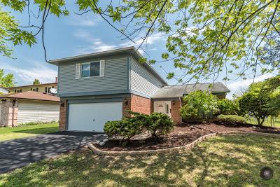 Bolingbrook Single Family Home New: 318 Drake Avenue