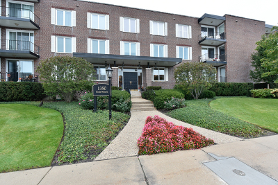 Lake Forest Condo/Townhouse For Sale: 1350 North Western Avenue #211