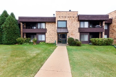 Palatine Condo/Townhouse New: 1413 North Sterling Avenue #203