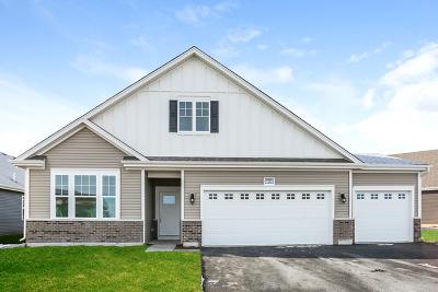 Pingree Grove Single Family Home For Sale: 1043 Carolina Court