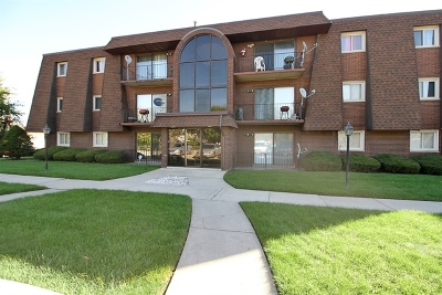 Calumet City Condo/Townhouse For Sale: 375 Stoney Island Avenue #102