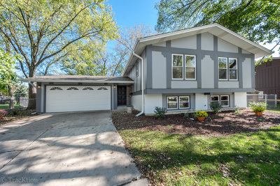 Downers Grove Single Family Home New: 6913 Parkview Drive