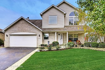 Lockport Single Family Home For Sale: 16445 Lakeside Drive