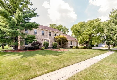Schaumburg Single Family Home For Sale: 17 Cherrywood Drive