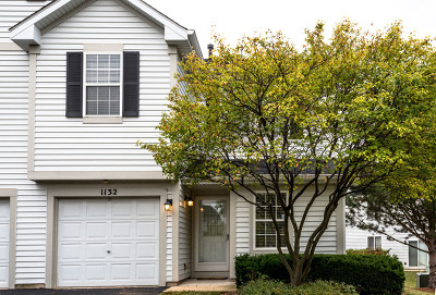 Naperville Condo/Townhouse Price Change: 1132 Grand Lake Court #1132