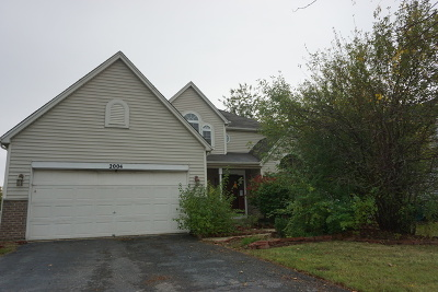 Plainfield Single Family Home For Sale: 2004 Chestnut Grove Drive