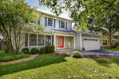Naperville Single Family Home Contingent: 2066 Springside Drive