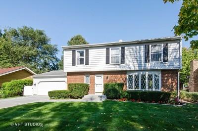 Cary Single Family Home New: 10 Lloyd Street