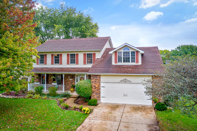 Batavia Single Family Home For Sale: 1420 Millview Drive
