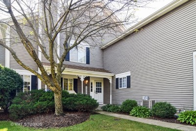 South Elgin Condo/Townhouse Contingent: 1253 Sandhurst Lane