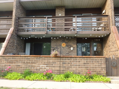 Elgin Condo/Townhouse New: 1809 Kenneth Circle