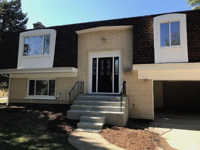 Palatine Single Family Home New: 48 West Cunningham Drive