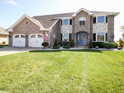 Tinley Park Single Family Home New: 17825 Cloverview Drive