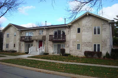 Downers Grove Condo/Townhouse New: 918 Rogers Street #201