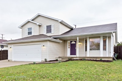 Plainfield Single Family Home For Sale: 1905 Mystic Drive