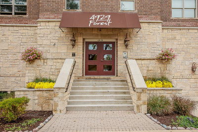 Downers Grove Condo/Townhouse New: 4929 Forest Avenue #2A