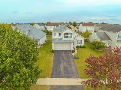 Plainfield Single Family Home New: 1610 Lake Pointe Drive