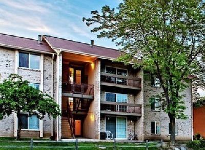 Lisle Rental New: 4673 Lake Valley Drive #2C