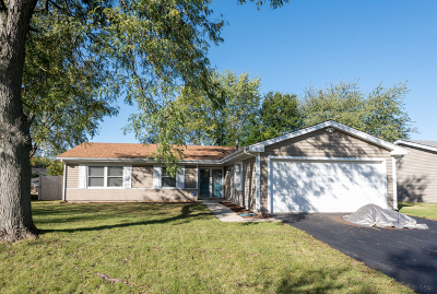 Bolingbrook Single Family Home New: 317 Dean Circle