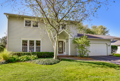Naperville Single Family Home New: 209 Willoway Drive