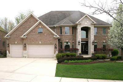 Bloomingdale Single Family Home For Sale: 308 Juliana Lane