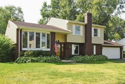 Palatine Single Family Home New: 1337 East Michele Drive