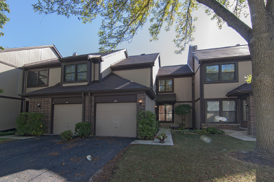 Wheeling Condo/Townhouse For Sale: 169 Shadowbend Drive