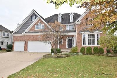Batavia Single Family Home For Sale: 2396 Kane Lane