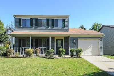 Bolingbrook Single Family Home New: 208 Aspen Drive
